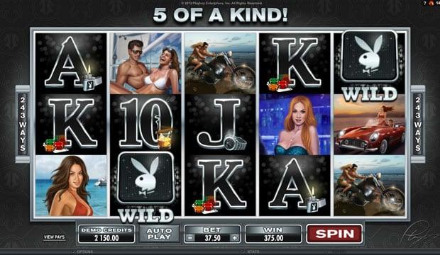 Комбинация с диким символом в игровом автомате Playboy