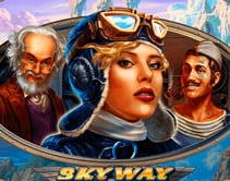 SkyWay HD